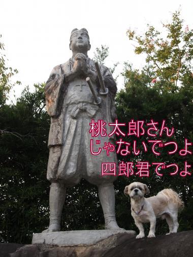 ・搾シ単9025846_convert_20120911215612