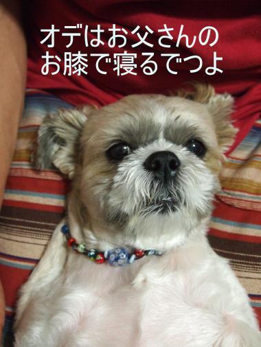 ・搾シ儕9035882-3_convert_20120911225742