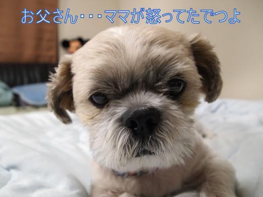 ・搾シ撤9055890_convert_20120912231546