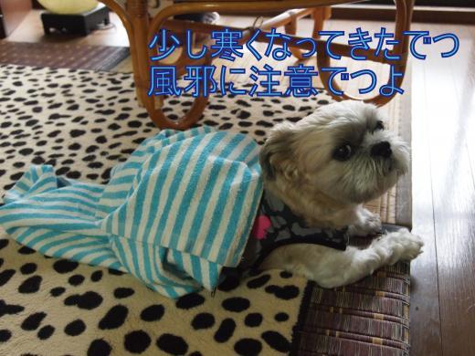 ・搾シ捻9226326_convert_20120922200324