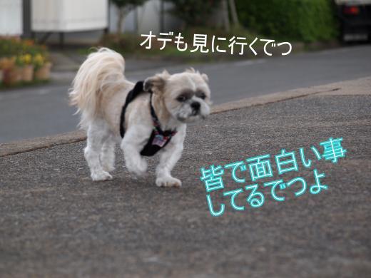 ・搾シ撤9106089_convert_20120923215530