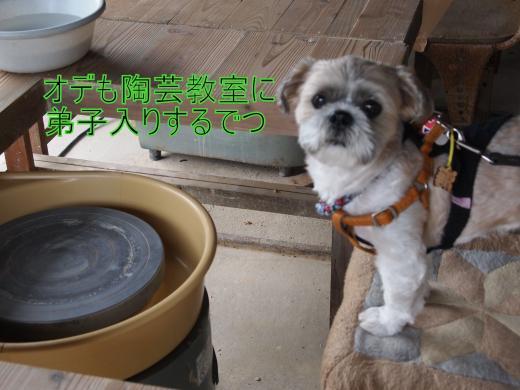・搾シ単9106120_convert_20120924015238