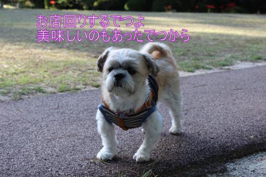 ・搾シ蝕MG_0273_convert_20121013021042