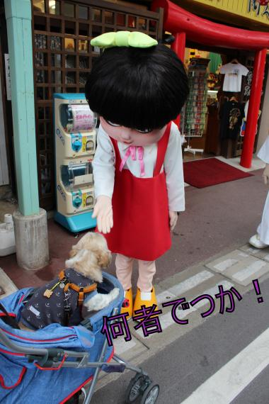 ・搾シ的MG_0320_convert_20121022213547