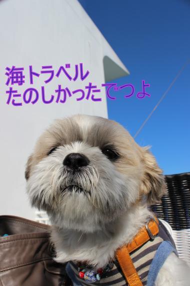 ・搾シ祢MG_0518_convert_20121102004938