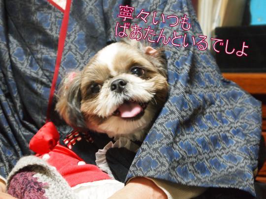 ・搾シ捻1010107_convert_20121106224845