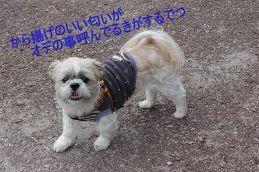 繝シ縺・MG_0643_convert_20121110030451