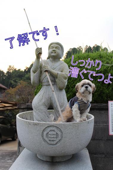 ・搾シ的MG_0688_convert_20121108024558