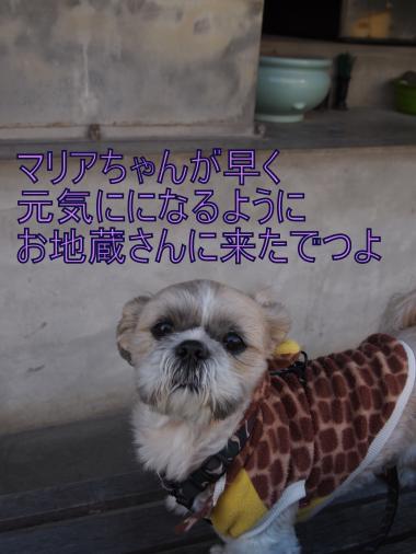 ・搾シ捻B206957_convert_20121122020050