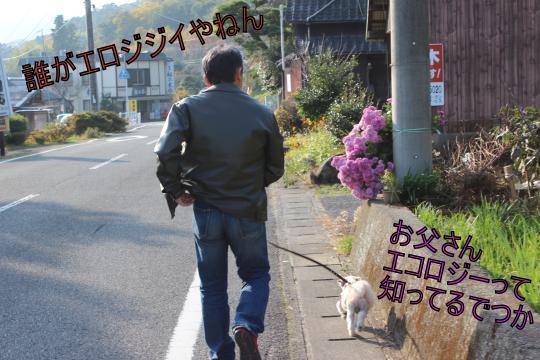 ・搾シ的MG_1551_convert_20121207220127