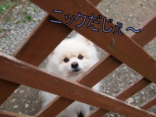 ・搾シ捻C057247_convert_20121211023750