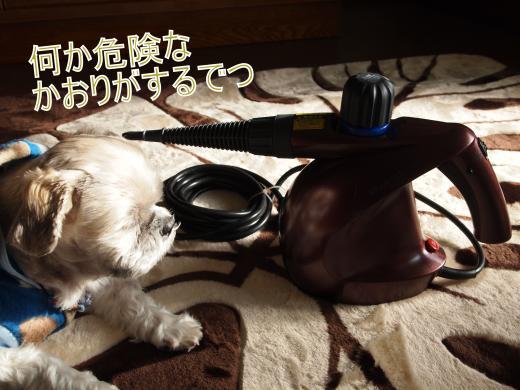 ・搾シ撤C087268_convert_20121210020421