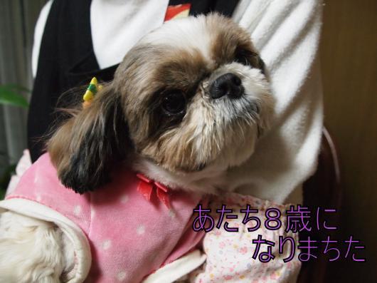 ・搾シ儕3132214_convert_20121210025208