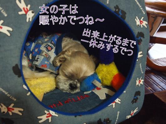 ・搾シ捻C157323_convert_20121222035034