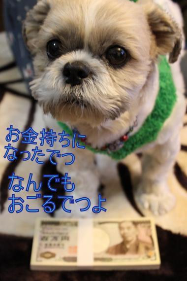・搾シ蝕MG_2079_convert_20121223205914