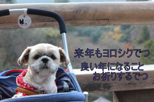 ・撰シ棚MG_1672_convert_20121230024151