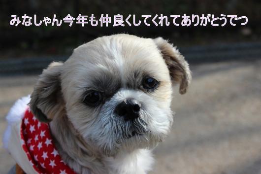 ・搾シ祢MG_1689_convert_20121230023911