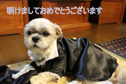 ・搾シ僮MG_2171_convert_20130101002022