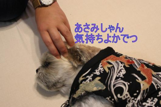 ・搾シ祢MG_2148_convert_20130103015139