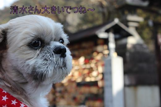 ・搾シ的MG_1666_convert_20121227022600