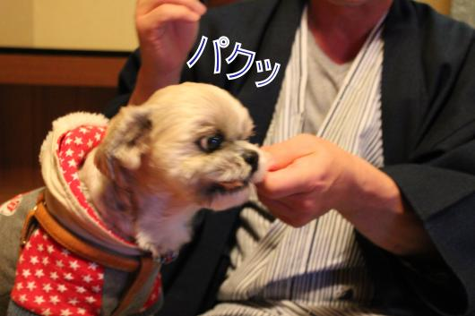 ・搾シ祢MG_1855_convert_20130113215902