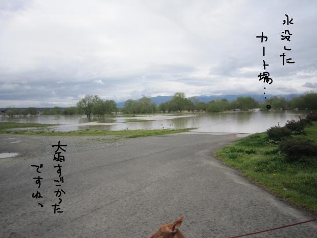 01_20120511005843.jpg