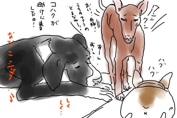 02_20120601005230.jpg