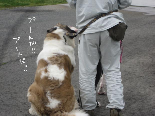 07_20120511010055.jpg