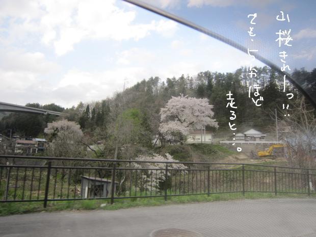 10_20120511010053.jpg