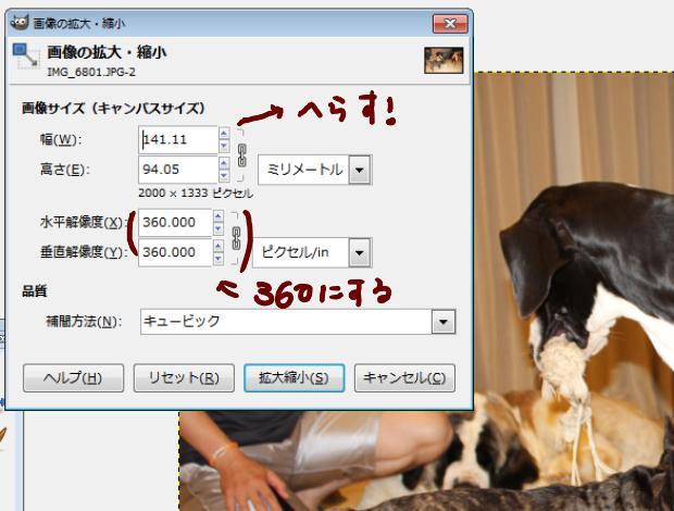 10_20120529061917.jpg