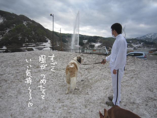14_20120511010440.jpg