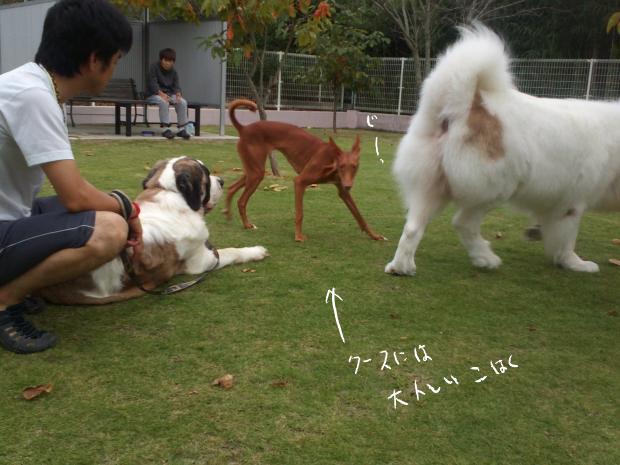 14_20120930005738.jpg