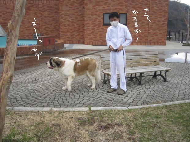 16_20120511010438.jpg