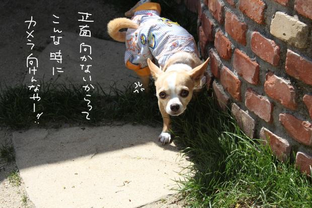 24_20120430014549.jpg