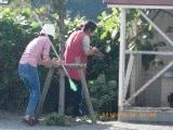 掃除 (2)
