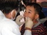 歯科 (1)