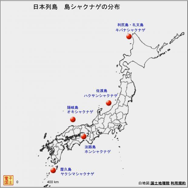 日本列島 島シャクナゲの分布図