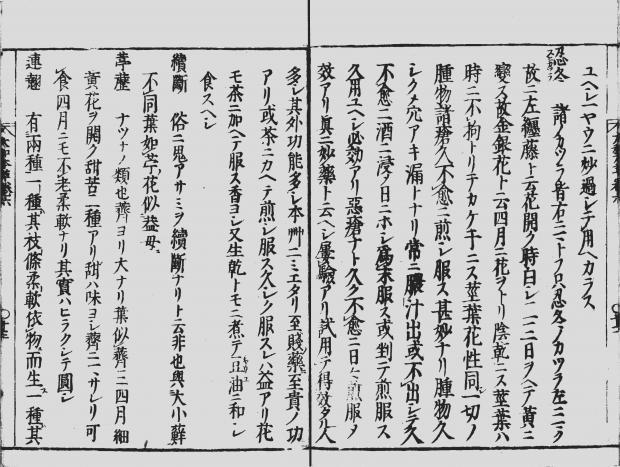 『大和本草』 (やまとほんぞう) のスイカズラ(忍冬)の記述