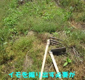 不耕起→耕起2