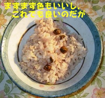 ツタンカーメンのえんどう豆5