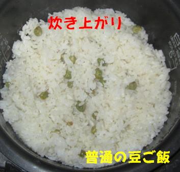 ツタンカーメンのえんどう豆3