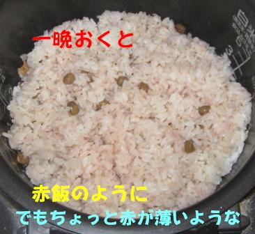 ツタンカーメンのえんどう豆4
