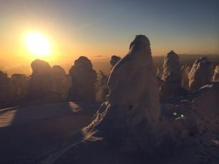 2014 写真 蔵王の樹氷2