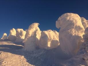 2014 写真 蔵王の樹氷3