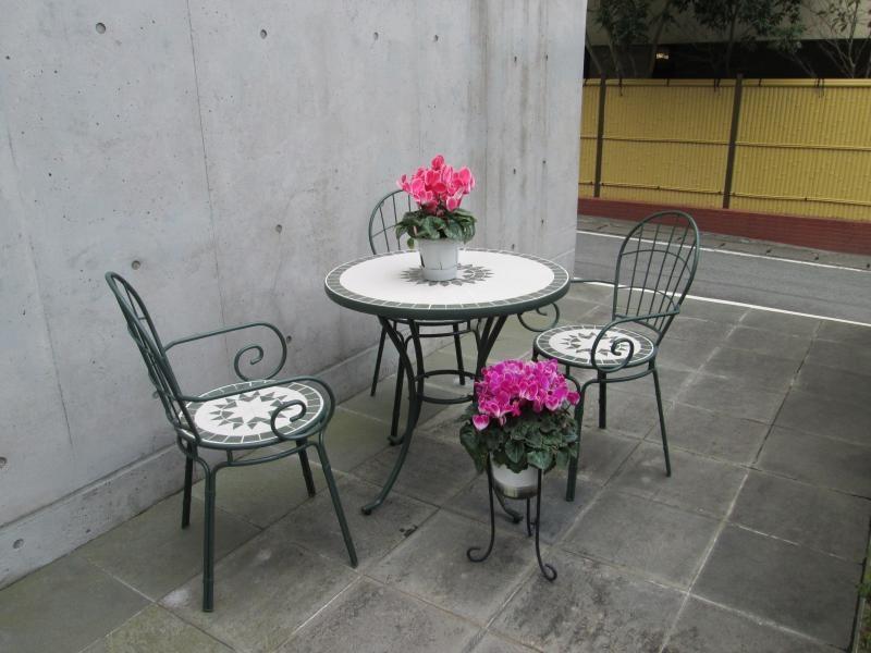 ガーデンハイビスカス