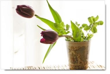 ◆1月のお花の定期便「花物語」