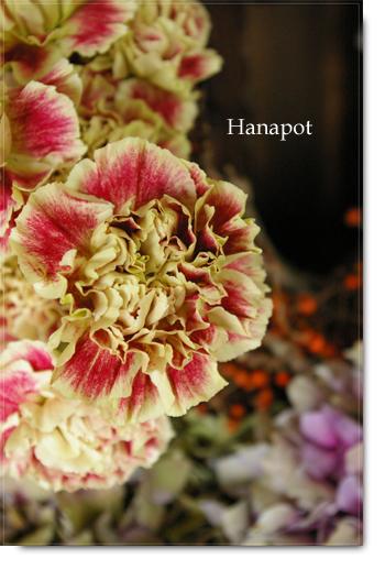 ◆京から届く「花物語」◆日常花がもっと楽しくなる 自分らしい「花のある暮らし」 京都の花屋 花pot(ポット)-カブキ