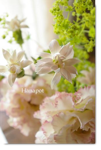 ◆京から届く「花物語」◆日常花がもっと楽しくなる 自分らしい「花のある暮らし」 京都の花屋 花pot(ポット)-ピンクのお星様