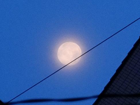 moon_705s.jpg