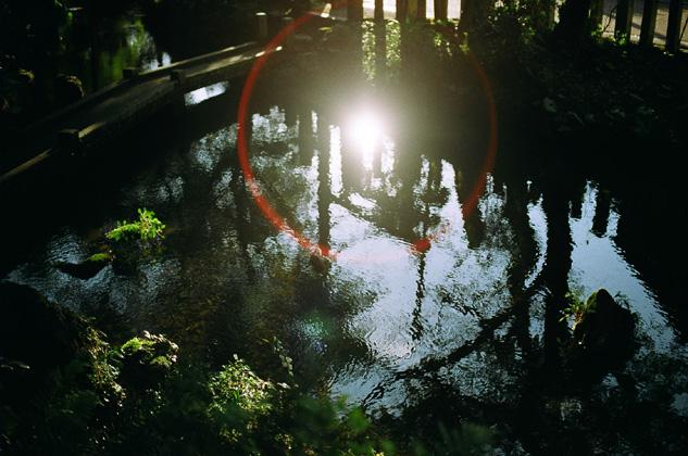 水面の日輪